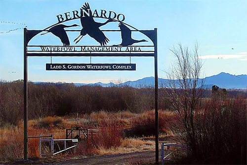 Bernardo Waterfowl Management Area - Ladd S. Gordon Waterfowl Complex - New Mexico State Game Commission