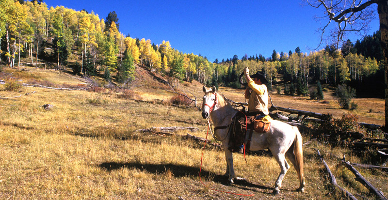New Mexico's State Game Commission Lands also provide public access for wildlife-associated recreation through the Gaining Access into Nature (GAIN) program. Potential GAIN activities include: wildlife viewing, photography, hiking, bicycling, cross-country skiing, snowshoeing, and horseback riding. (New Mexico Department of Game and Fish)