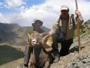 This Wheeler Peak ram was taken by 2009 auction winner Peter Kaindl. (Photo: Courtesy of Peter Kaindl)