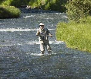 Angler enjoys fishing in Costilla Creek, New Mexico.