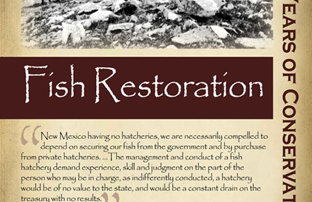 Decades work to restore fish populations began in the 1920s- New Mexico Game & Fish Century of Conservation