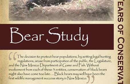 Protecting bear as game animals, 1990s - New Mexico Game & Fish Century of Conservation