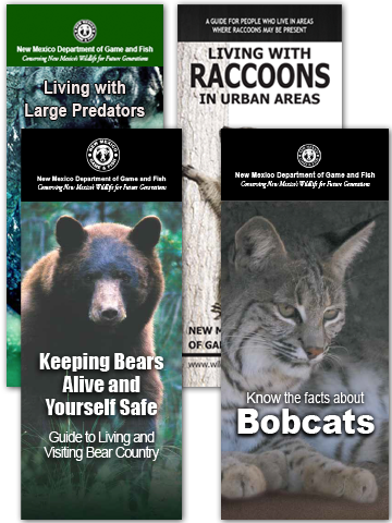 Download and print educational wildlife brochures (including Living with Large Predators in New Mexico, Keeping Bears Alive and You Safe!, Living with Raccoons in Urban Areas, Know the Facts about Bobcats) from New Mexico Department of Game and Fish publications.
