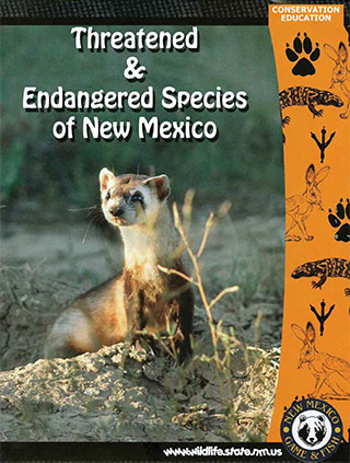 Endangered Species Coloring Book available free in print and PDF formats from Conservation Education, New Mexico Game and Fish