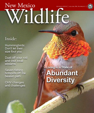 New Mexico Wildlife - Summer 2016 - News Magazine from NMDGF Game and Fish