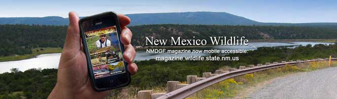 New Mexico Wildlife - NMDGF magazine now available online - magazine.wildlife.state.nm.us