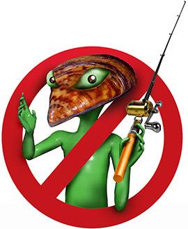 Stop Aquatic Aliens in New Mexico waters