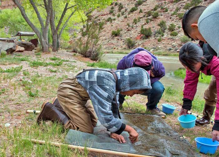 Española Valley students search for macroinvertebrates by the Rio Chama (Zen Mocarski).