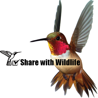 Share with Wildlife to assist all New Mexico wildlife in need, no matter what species. Background photo by Mark Watson.