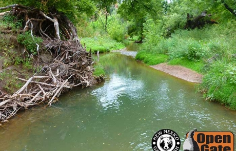 Open Gate Property 125 LCpl. Steven Chavez Fishing Area, Hondo, New Mexico