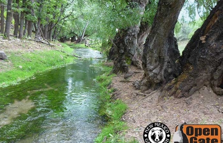 Open Gate Property 145 offers public shoreline access for fishing along the Rio Penasco, Mayhill, New Mexico.