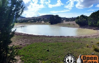 Open Gate Property 133 (Dove, Quail, Deer Hunting) San Antonio, New Mexico: Grassland, Scrub-woodland, Woodland, and Riparian Habitat