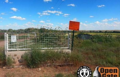 Open Gate Property 111 (Dove Hunting) Tucumcari, New Mexico: Grassland, Scrub-woodland, and Cropland