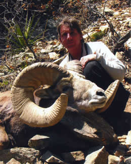 B. Neal Ainsworth, Jr. with New Mexico record Rocky Mountain bighorn sheep, taken on Taos Pueblo, in Taos County in 2005. (Photograph courtesy of B. Neal Ainsworth, Jr.)