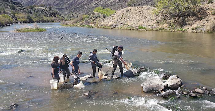 Students in conducting fish surveys on the Rio Grande. (Gone Fishing, Discover New Mexico - Wildlife Conservation Curriculum, New Mexico Dept. of Game and Fish)