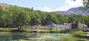 Glenwood Fish Hatchery near Silver City - New Mexico Department of Game & Fish