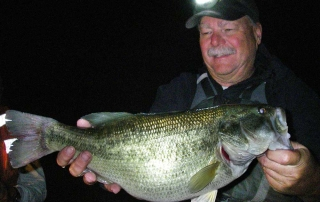 Nice sized largemouth bass captured during a population survey at Bill Evans Lake - (New Mexico Game and Fish).