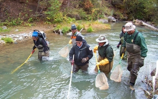 New Mexico Game and Fish biologists conducting a electrofishing survey with the Carson National Forest on the Red River.