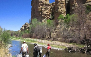 New Mexico Game and Fish department staff conducting a population survey on the Gila River.