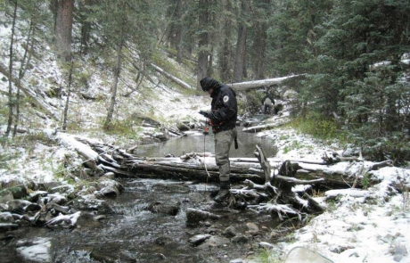 New Mexico Game and Fish biologist reading water quality measurements on a mountain stream.