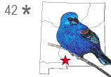 Birding-Trail-Map-New-Mexico-Icon-SITE-42-thumb