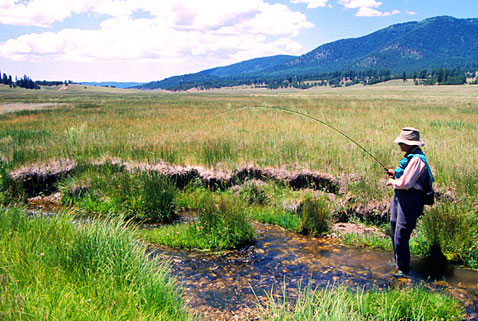 Angler in a northern stream - more opportunities with Open Gate public access to private land property, New Mexico Game and Fish