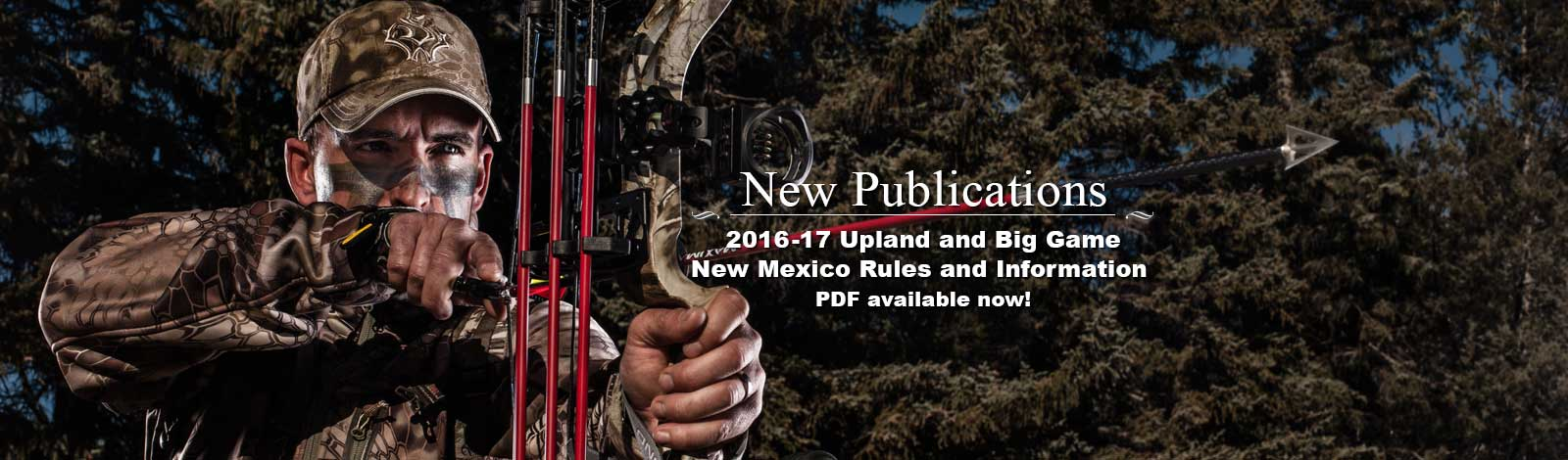 backgrounds-slider-1600×470-New-Mexico-2016_17-Upland-and-Big-Game-Rules-Info-Publication