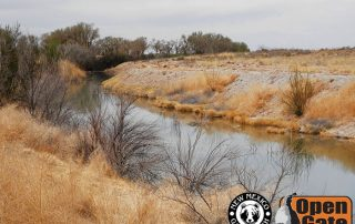 Open Gate Property 156 (fishing) Roswell, New Mexico: bass, bluegill, trout, catfish