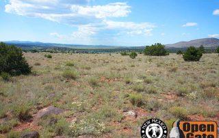 Open Gate Property 150 (hunting) Luera Mountains, New Mexico:Desert Grassland, Pinyon-Juniper Woodland, Ponderosa Pine Forest