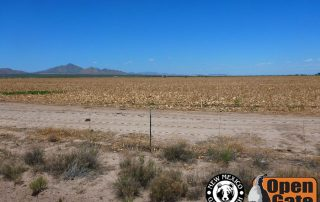 Open Gate Property 155 (hunting) Cotton City, New Mexico: Grasslands, Agricultural Field, Drainages
