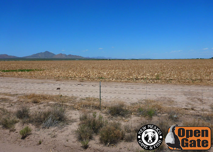 155 cotton city new mexico department of game fish for Nm game and fish unit map