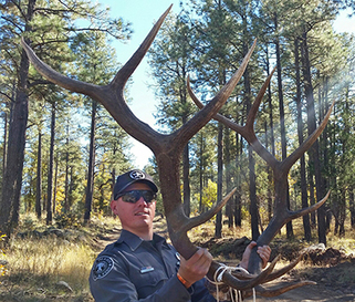 Illegal possession of elk antlers leads to stiff fine for New mexico department of game and fish
