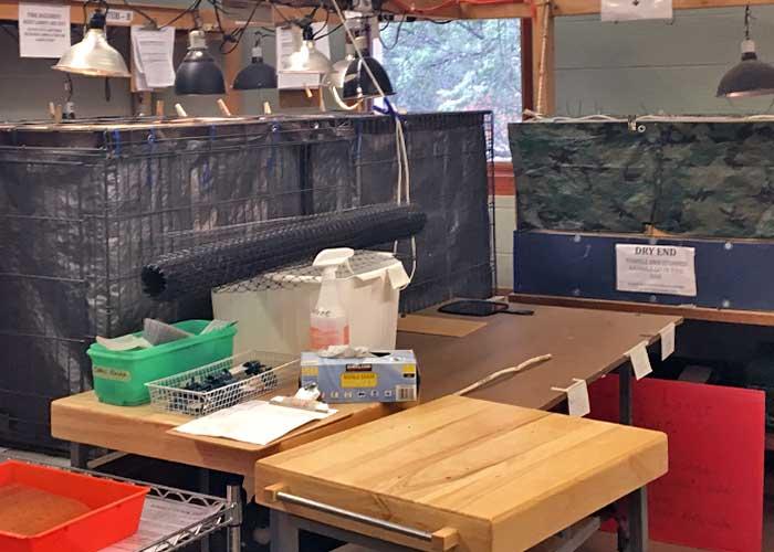 Share with Wildlife, New Mexico – Project Highlight: Rehabilitating Albuquerque's Wildlife