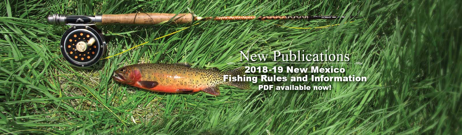 Publications new mexico department of game fish download pdf for Nm game and fish
