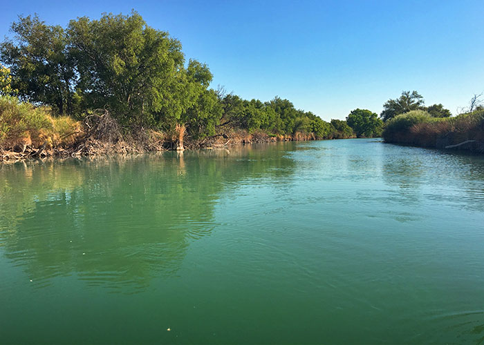 Share with Wildlife, New Mexico – Project Highlight: Tracking Turtle Survival