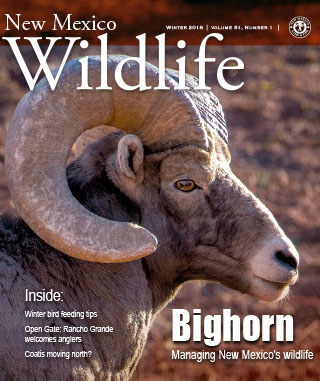 New Mexico Wildlife - Winter 2018 - News Magazine from NMDGF Game and Fish