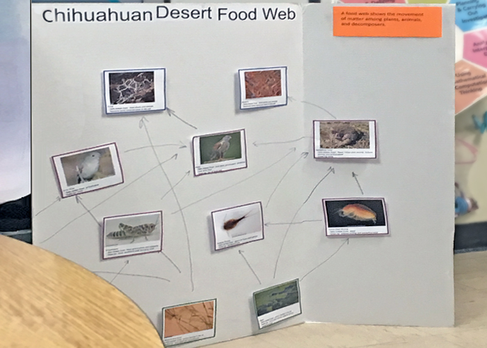 Share with Wildlife, New Mexico – Project Highlight: Teaching Science and Leadership Skills Simultaneously