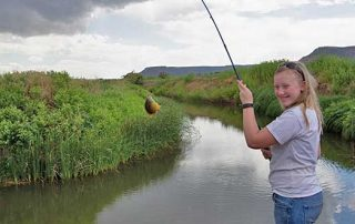 What do you do if you are not drawn in New Mexico's Big Game Draw. You go fishing.