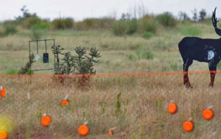 Skills Camps offer a wide variety of skills to be learned, but also many targets to shoot.