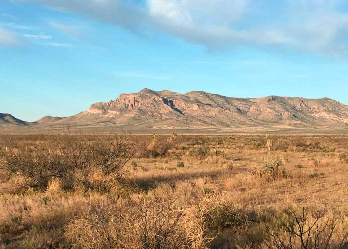 Tons of Diversity in the Bootheel - Project Highlight- Share with Wildlife, New Mexico Department of Game and Fish