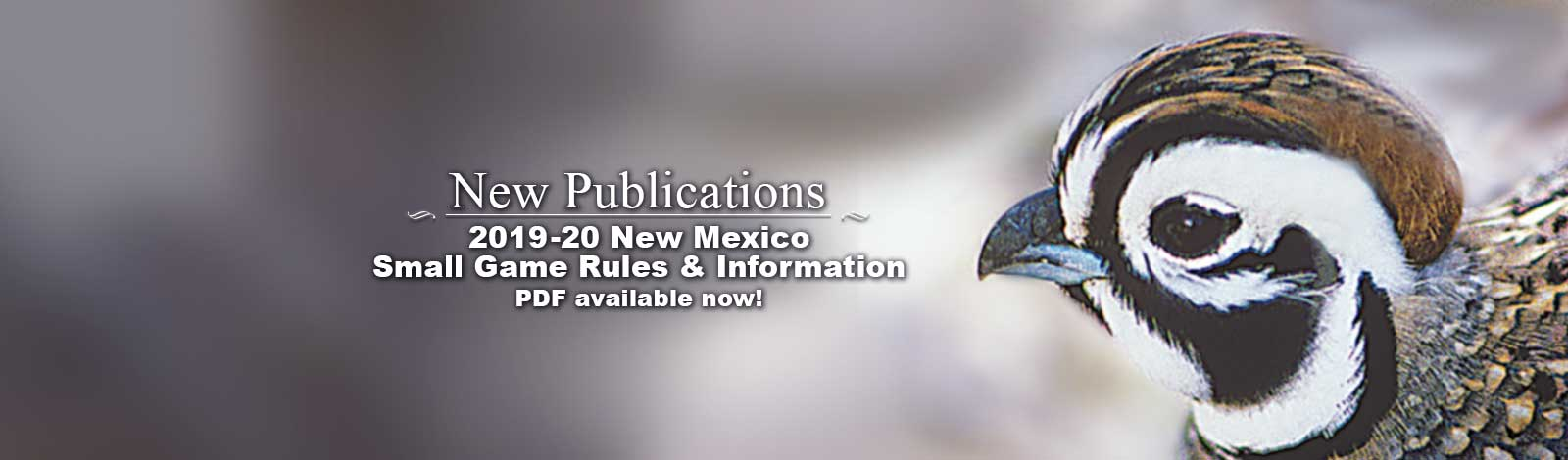 NMDGF - New Mexico Department of Game & Fish