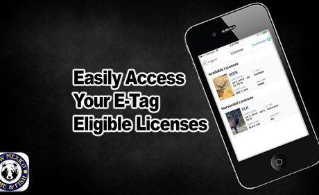 Easily access your e-tag eligible licenses