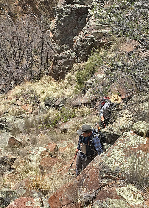Tracking a Rare Snake Project Highlight- Share with Wildlife, New Mexico Department of Game and Fish