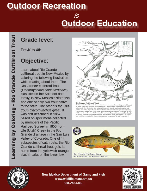 Learning by Coloring: developed by New Mexico Department of Game and Fish professional educators, biologists and game wardens.
