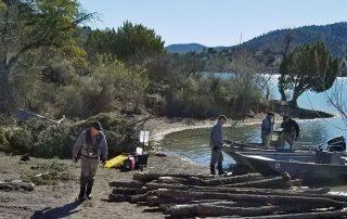 Log pile on shore.