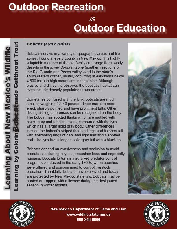 Learning About New Mexico Wildlife: developed by New Mexico Department of Game and Fish professional educators, biologists and game wardens.