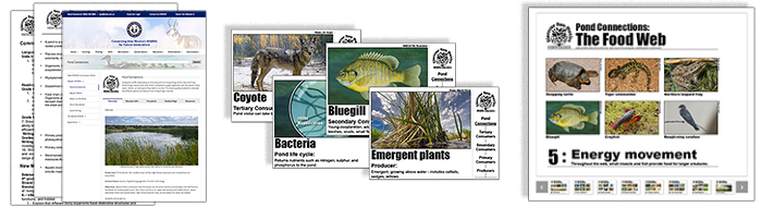 New Mexico Wildlife Education curriculum for upper elementary through middle school grade levels, correlated to Common Core State Standards, current NM Science Standards and Next Generation Science Standards