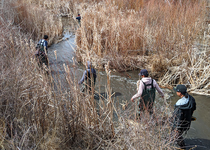 Engaging Students in Studying Wildlife in the Face of COVID-19, New Mexico Department of Game and Fish