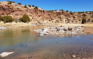 Historic channel reopened to increase habitat