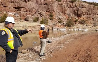 Inspecting a new gravel point bar